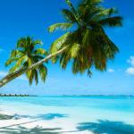 Aruba picture
